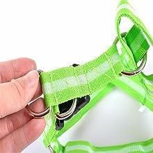 harness