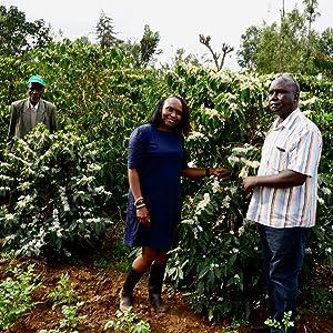 Grand Parade Kenya AA Africa Unroasted Coffee Beans Single Origin Arabica Fairtrade Organic Ethiopia