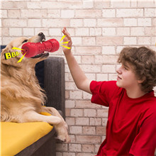 Natural Rubber Dog Chew Toys