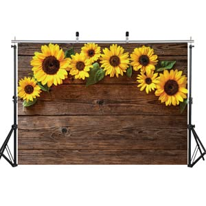 aiikes sunflower backdrop