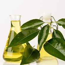 lavender air freshener, natural air freshener spray, eucalyptus spray, odor eliminator, air