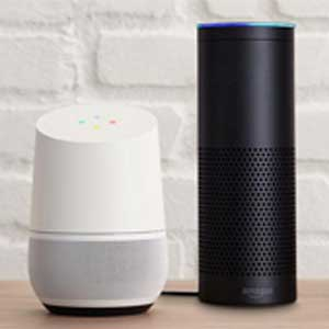 alexa google home voice control