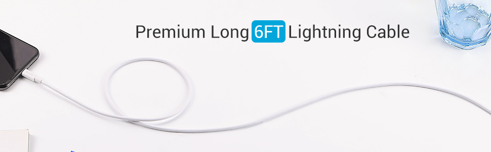 iPhone Cable 6ft
