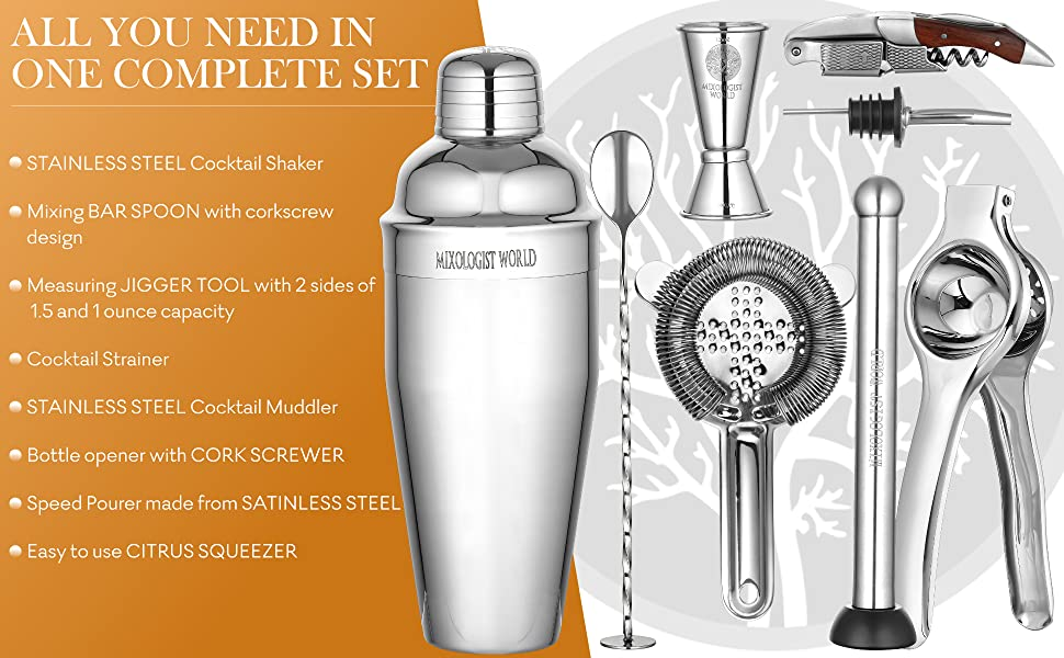 stainless Steel Martini Shaker with Built-in Strainer, Mixing Spoon, Measuring Recipes Booklet