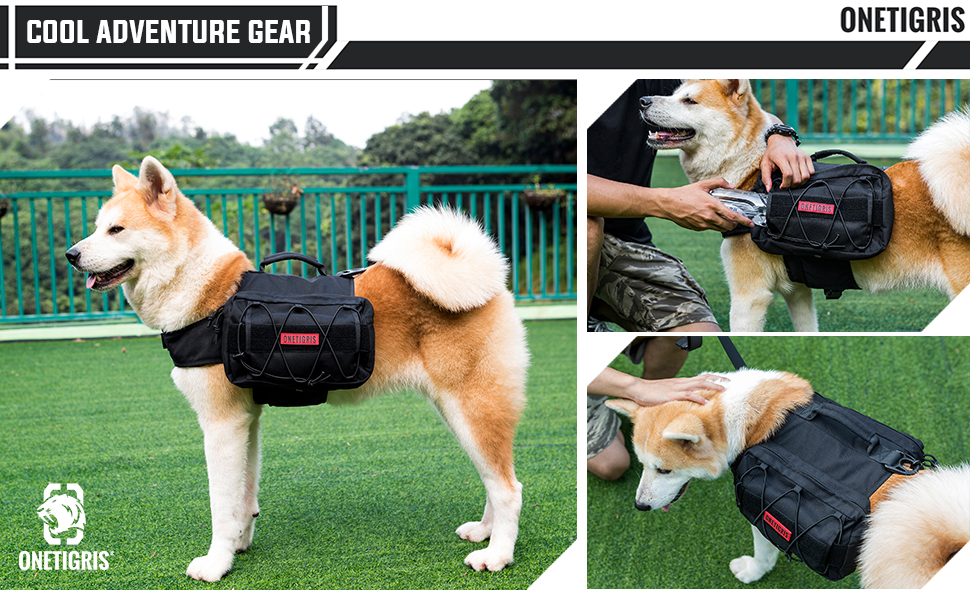 pet gear bag