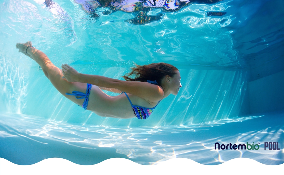 NortemBio Pool pH- Minus 1 L, Reductor pH Natural para Piscina y ...