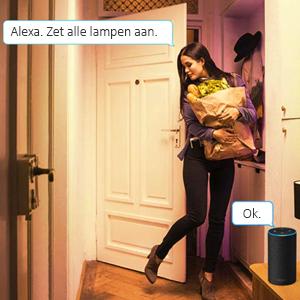 Alexa stembesturing smart lampen