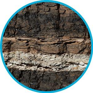 soil lectin shield gaviscon wellness formula burn aloe vera adrenal cortex fatigue complex reuteri a