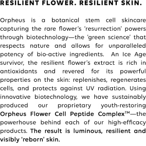 resilient flower