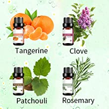 tangerine clove patchouli rosemary essential oil