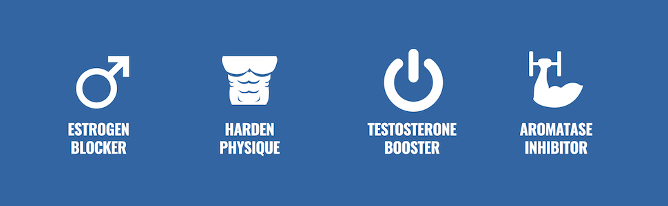 Androsurge: Estrogen Blocker, Harden Physique, Boost Testosterone, and Aromatase Inhibitor