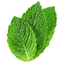 Peppermint Oil, relieve irritation, relieve inflammation