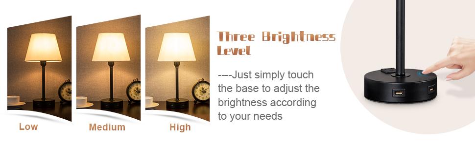 Three Brightness Level