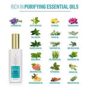 room freshener, room spray, linen spray, car freshener, odor absorber, room spray, lavender spray