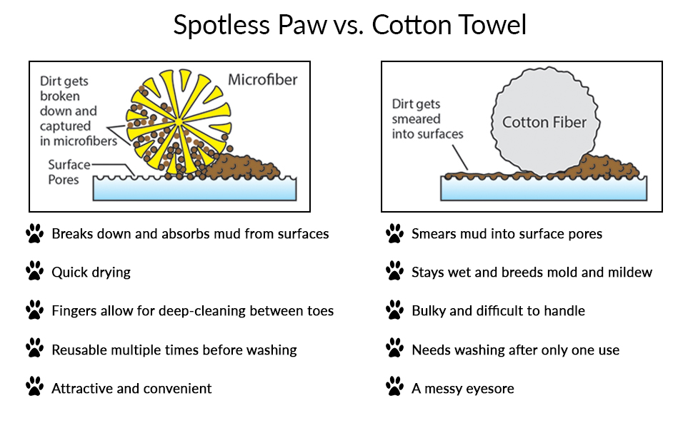 dirty dog paw cleaning