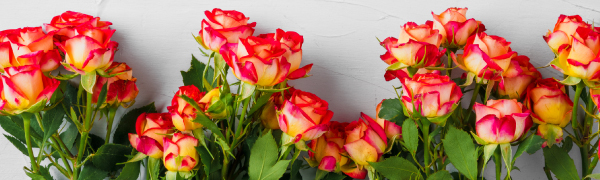 Arabella Bouquets Banner Image