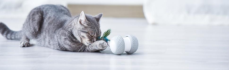 Robotic Cat Toys