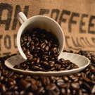 Fresh Roasted Organic Fair Trade Coffee Beans