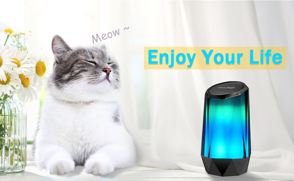 Colorful Lights wireless Bluetoooth speaker,  enjoy your life portablely