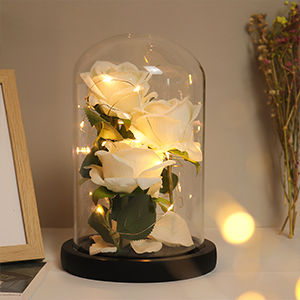 beauty and the beast gift