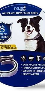 collier chien antipuce tique colier parasite parasitaire anti