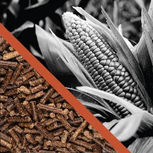 The Corn Cob Difference