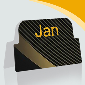 Self Adhesive Monthly Tabs-5