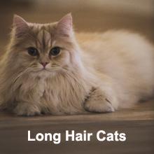 cat deshedding brush for long hair cats