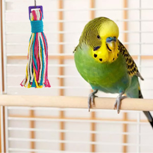 string kabob cockatiels bungee perches paper foraging weave platinum spiral hanging