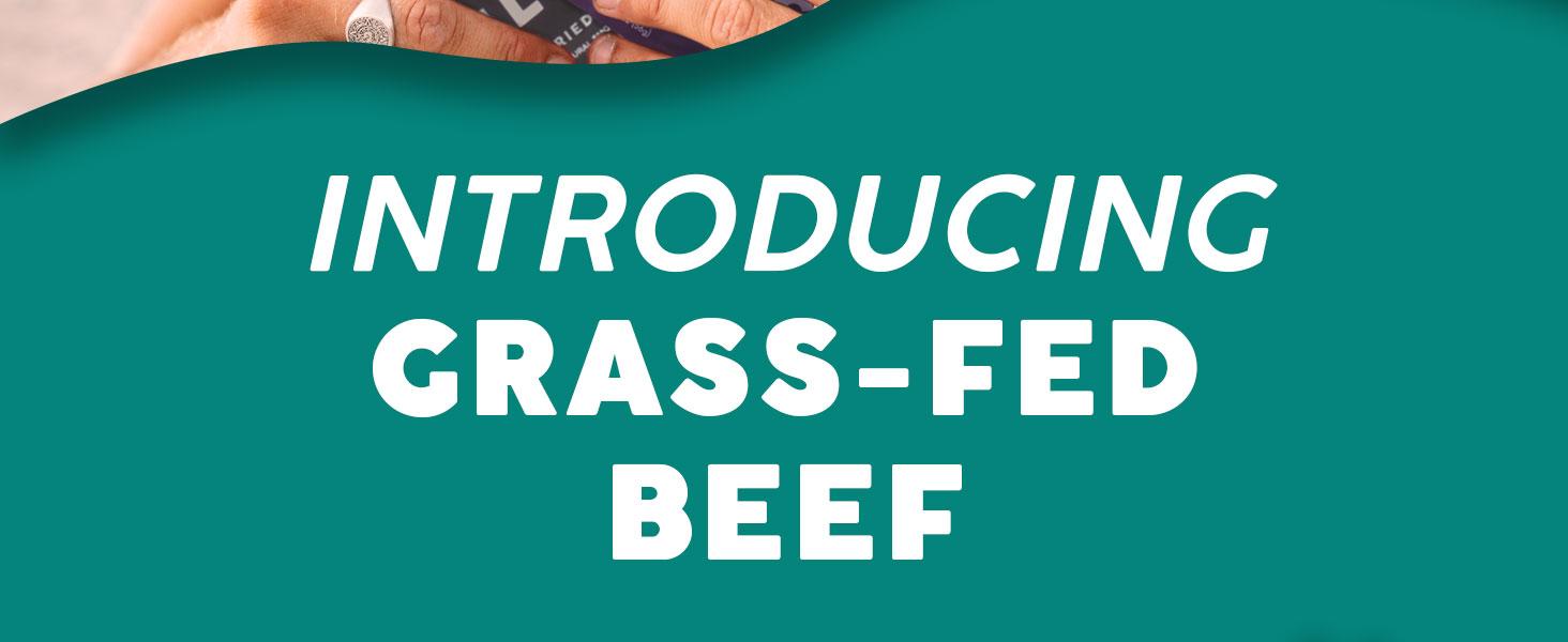 grass fed beef biltong jerky high protein low carb sugar free gluten hormones antibiotics
