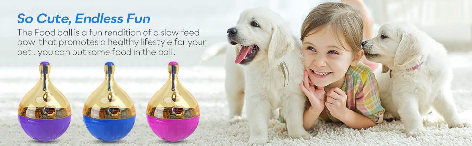 Mangeoire puzzle pour chien