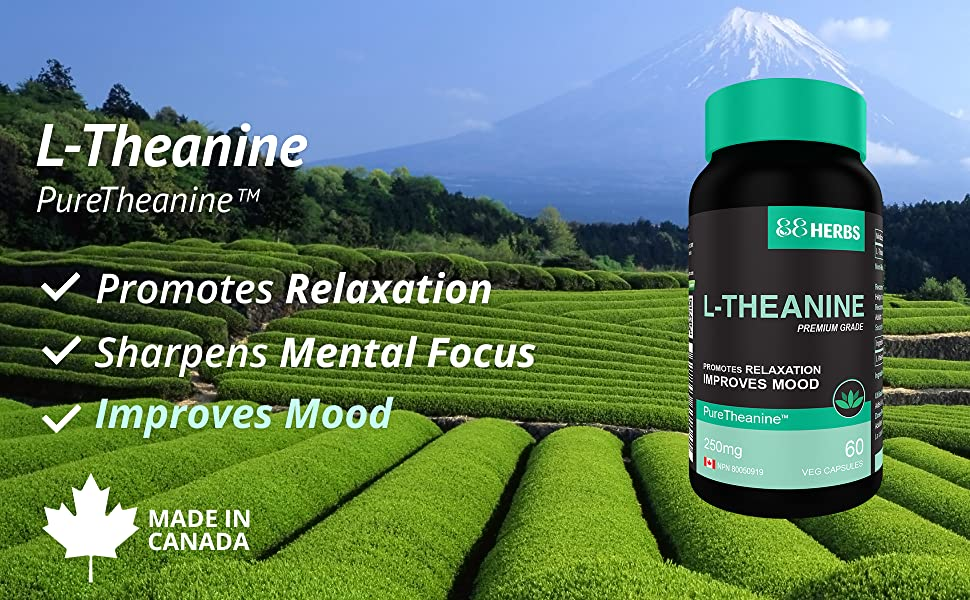 88herbs L-Theanine, ltheanine, l theanine