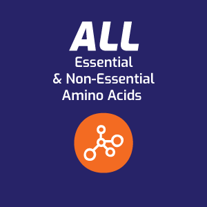 All essential and non-essential amino acids