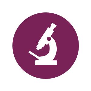 Examined Icon