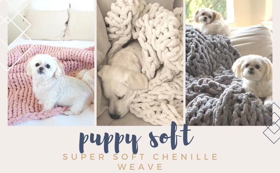 puppy dog friendly pet friendly super soft cozy cozi comfortable plush blanket