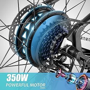 350W MOTOR