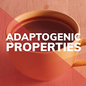Adaptogenic Powders Properties Adaptogen Wild Foods Mushroom Extract Clean Real Food Healthy Supple