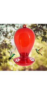 Twinkle Star Red Hummingbird Feeder with 3 Feeding Ports