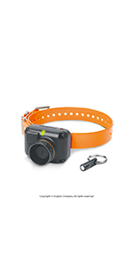 Dogtra STB Beeper Extra Collar HAWK Sound Version for Upland Hunting Gun Dog