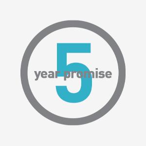 5 años de promesa