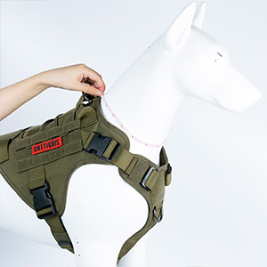 small dog vests