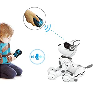 Remote control robot for kids