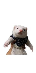 FULUE Ferret Vest Clothing Ferret Accessories Kit Outfit
