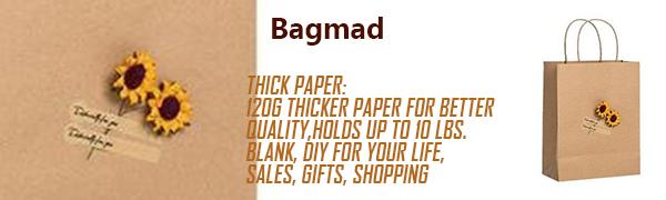 bagmad kraft paper bags with handles