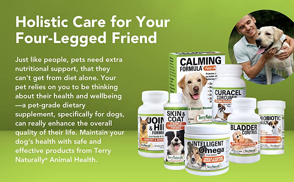 dog nutrition, pet health, dog diet, supplements for dogs, healthy dog, safe animal products