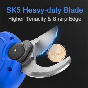 sk5 blade