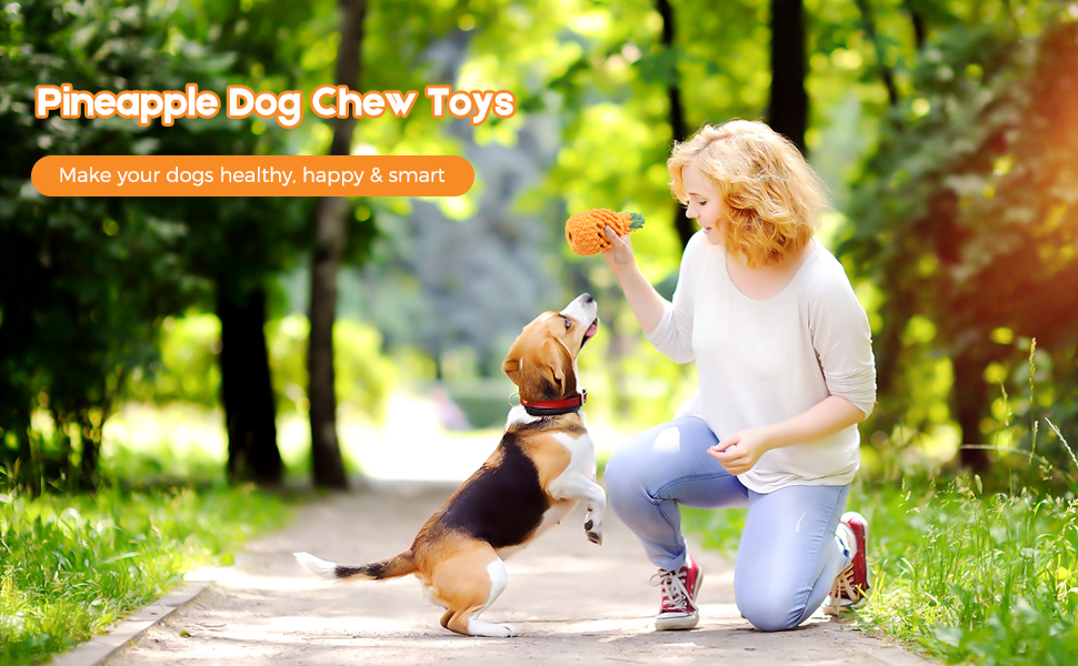chew toys for dogs