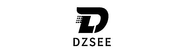 DZSEE
