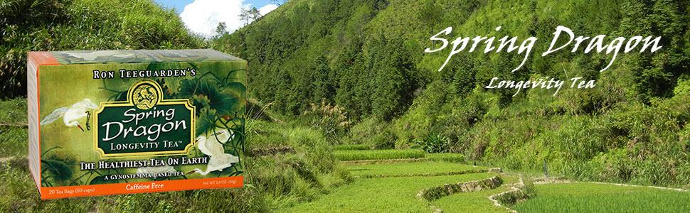 Dragon Herbs Spring Dragon Longevity Tea - 20 Tea Bags - 60 Cups - Made  with Premium Gynostemma