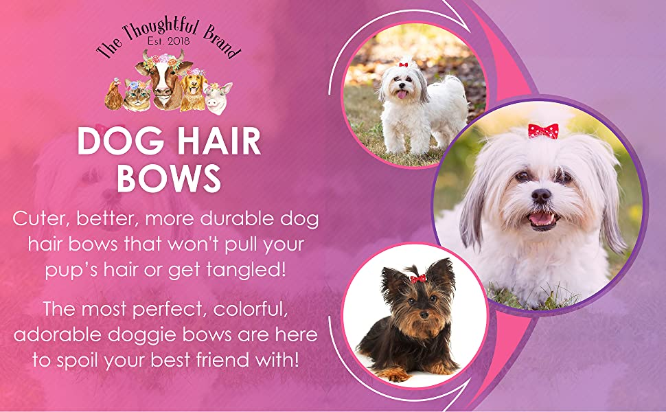 Dog BowsThanksgiving Dog BowsBows for DogsDog Hair ClipsThanksgiving Hair ClipsDog Hair AccessoriesREADY TO SHIP